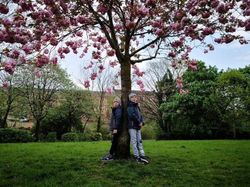 Glasgow Park