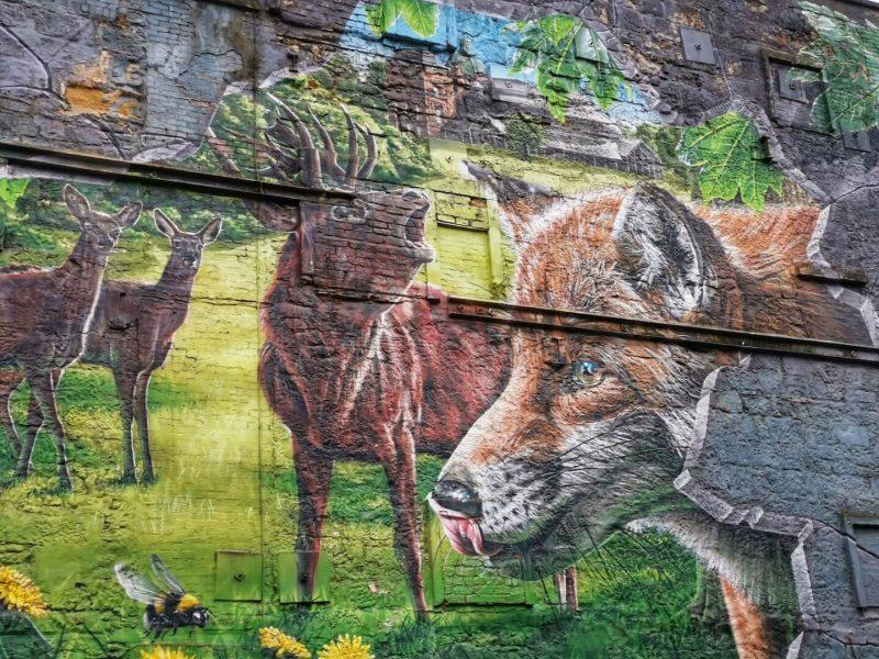 Street Art Glasgow bambini