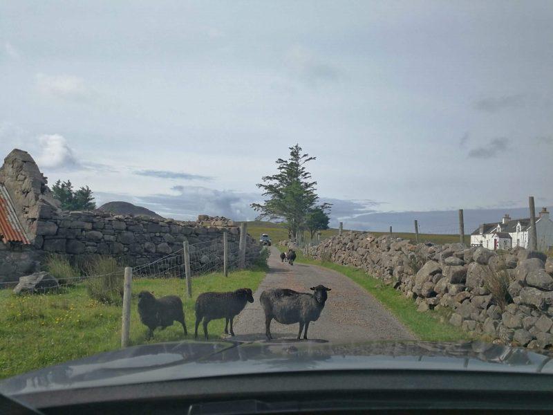 Noleggio auto Scozia
