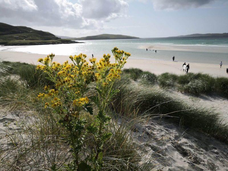 Isola di Harris spiagge