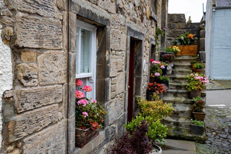 Falkland cottage fiori